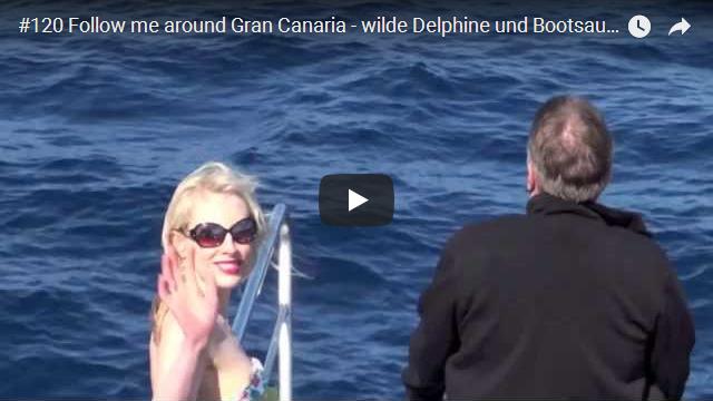 ElischebaTV_120_640x360 wilde Delphine Bootsausflug in Gran Canaria
