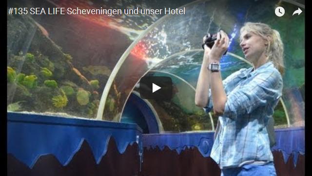 ElischebaTV_135_640x360 SEA LIFE Scheveningen und Hotel Crowne Plaza