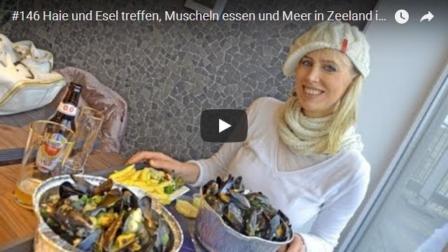 ElischebaTV_146_640x360 Zeeland im Winter