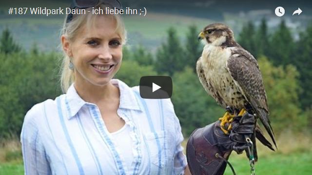 ElischebaTV_187_640x360 Wildpark Daun in der Eifel
